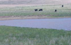 Six New Ponds In Ellsworth, Kansas