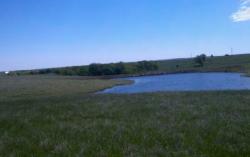 Pond Construction Project